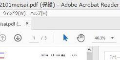 PDF保護